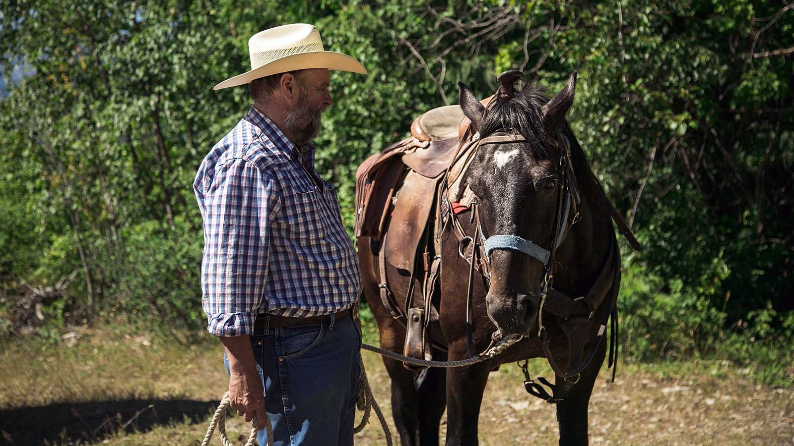 Man with cowboy hat next to a horse with western saddle