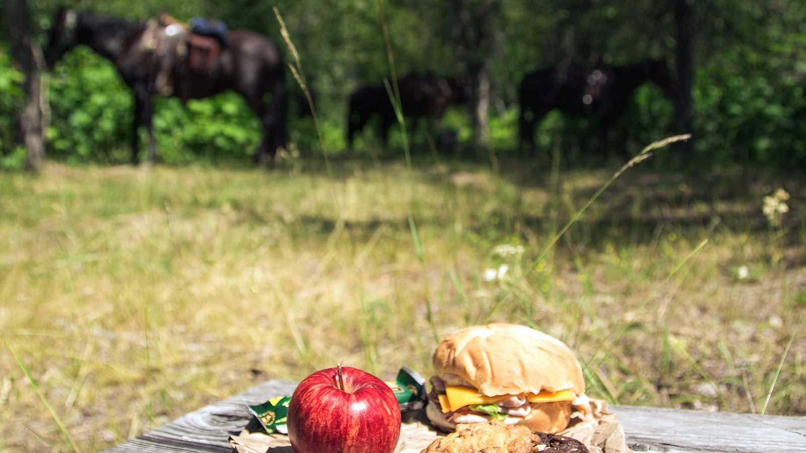 close caption of an apple and sandwich with horses in the background