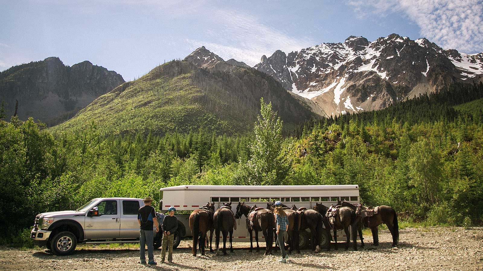 Group of horses in front of trailer and snow capped mountain near Pemberton in background