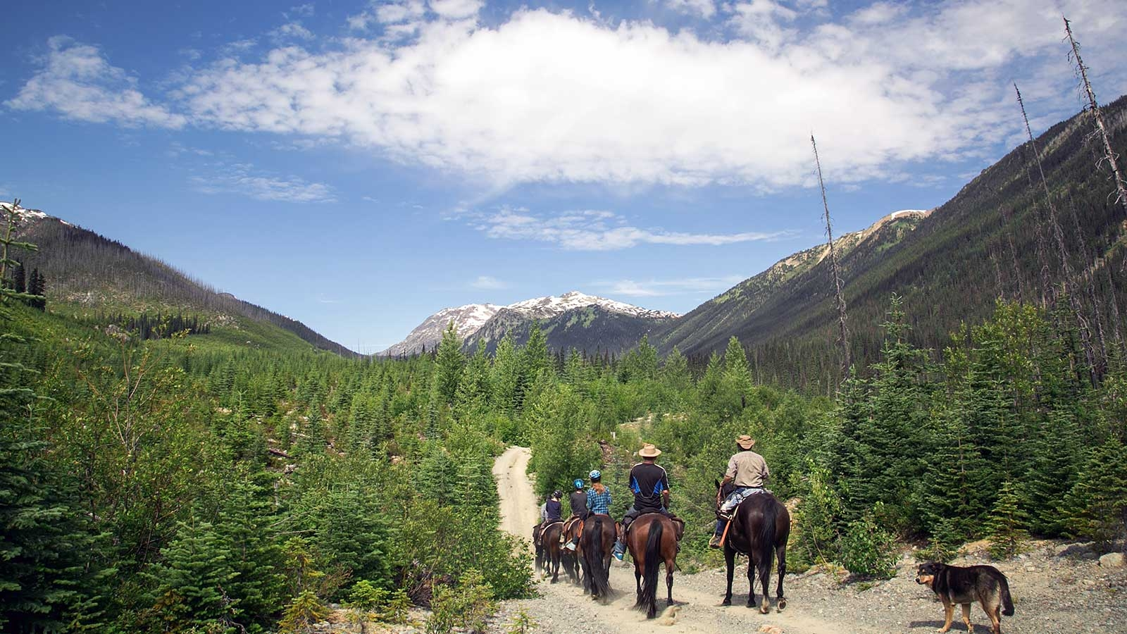 group of horse back riders riding through remote mountain area