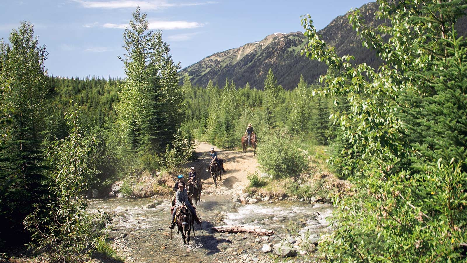 group of horseback riders crossing a stream in lush greenery and mountain range close to Pemberton in the background