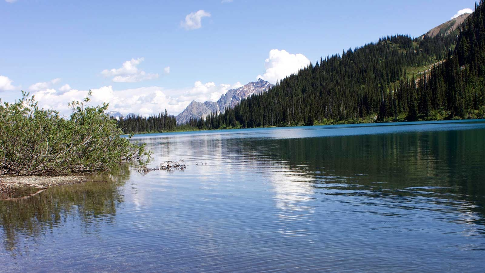 calm lake with mountains and lush forrest in the back