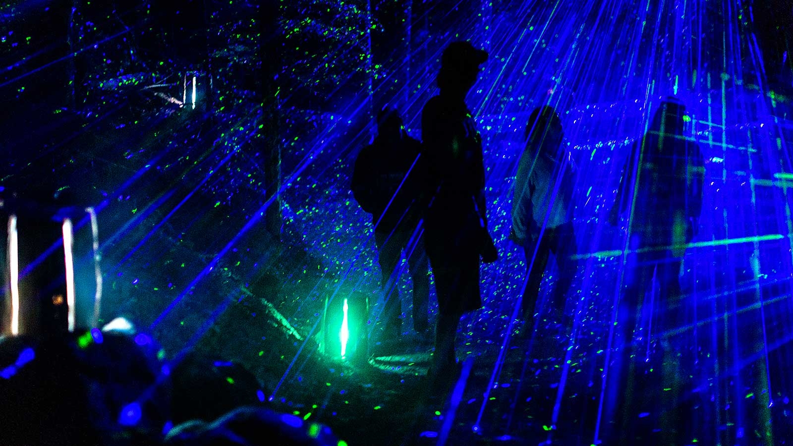 Four people standing in a green and blue light show