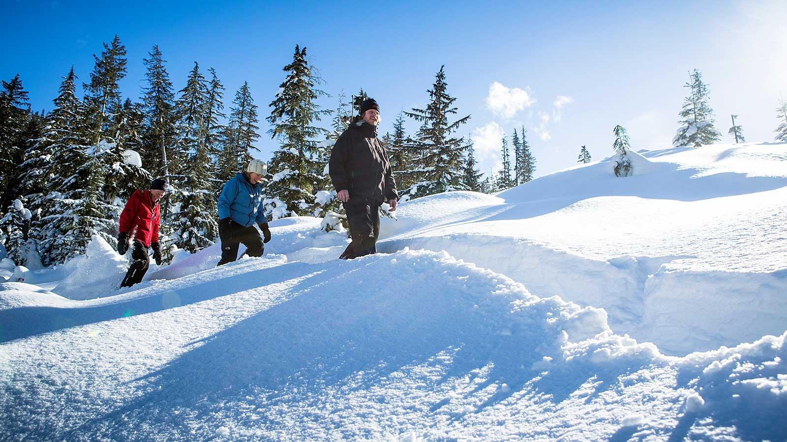 3 people snowshoeing through a sunny winter landscape with trees covered with snow in Whistler
