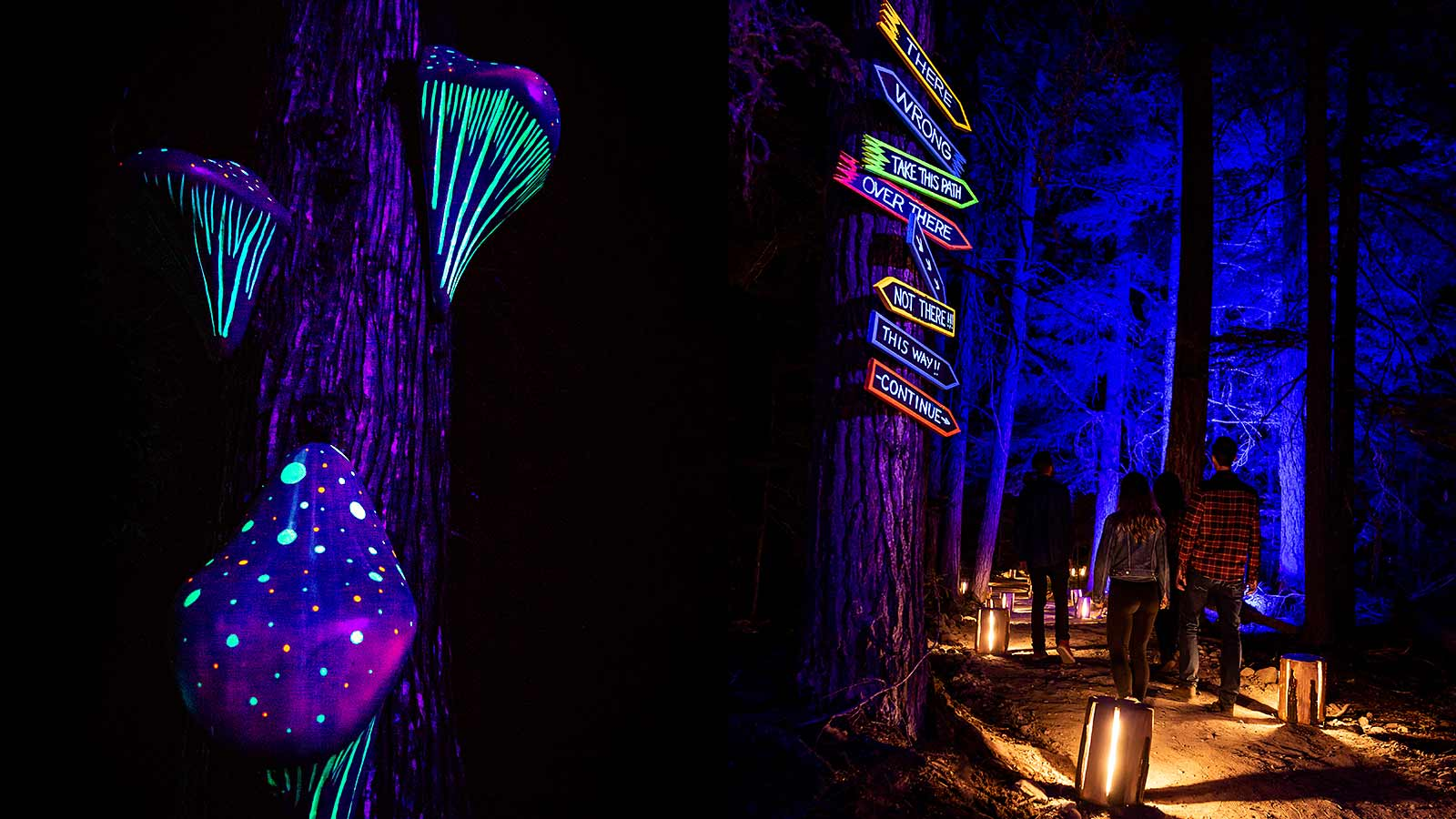 Neon lights and signs at Vallea Lumina Whistler