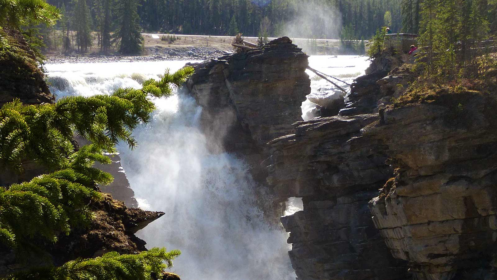 Athabasca Falls in Summer